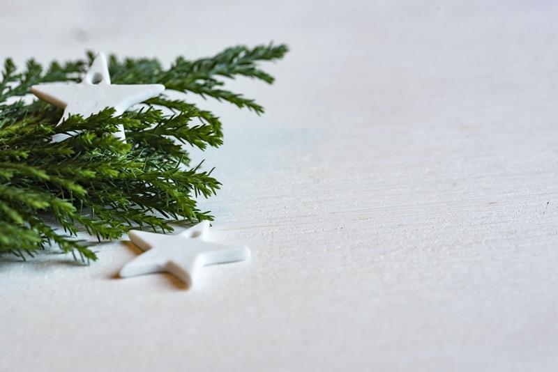 agineo wuenscht frohe Weihnachten